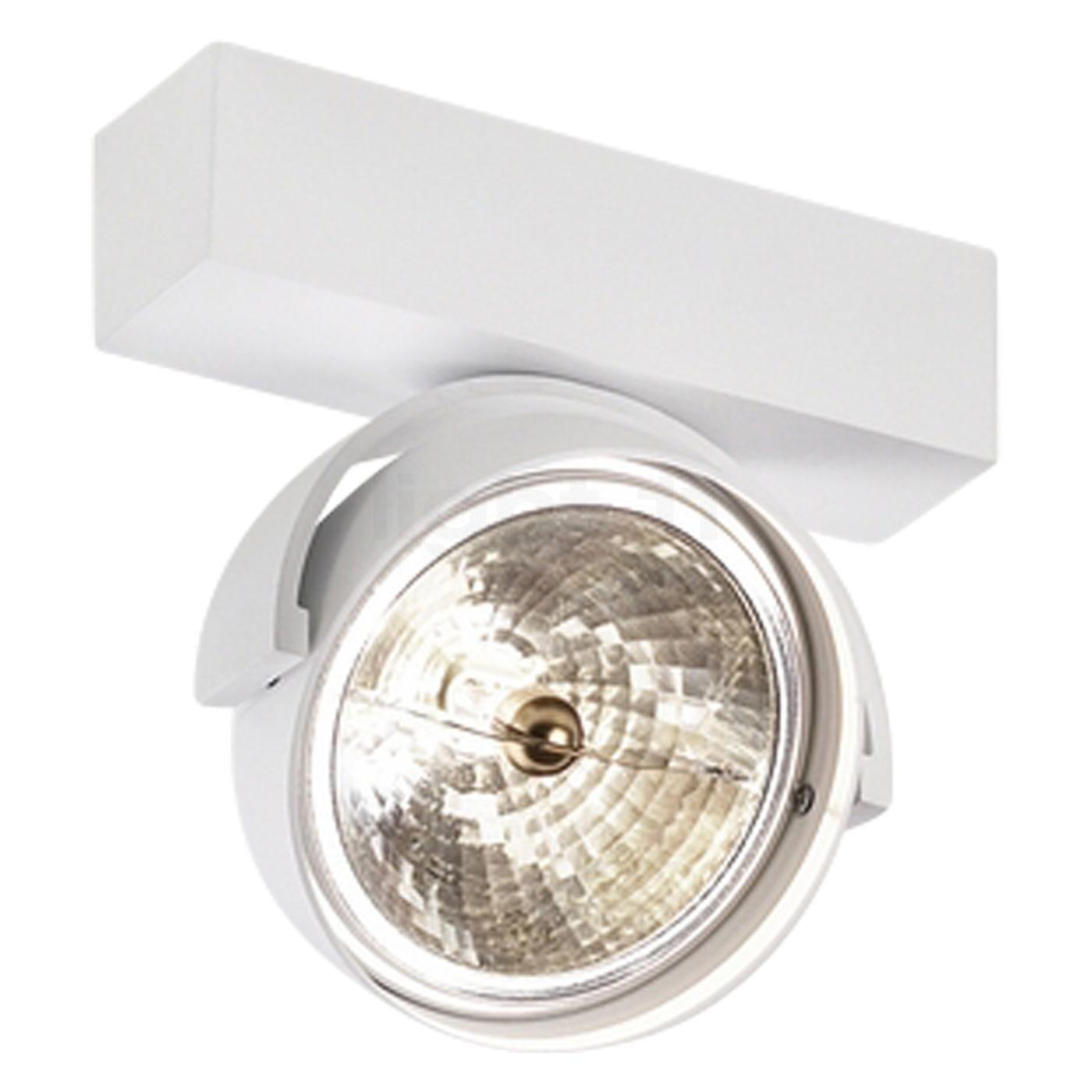 plafondlamp hal (om schilderij bijvoorbeeld te belichten)