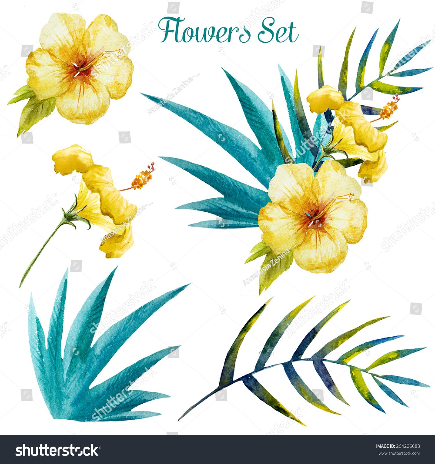 Set watercolor flowers tropical exotic hibiscus palm rix set watercolor flowers tropical exotic hibiscus palm izmirmasajfo