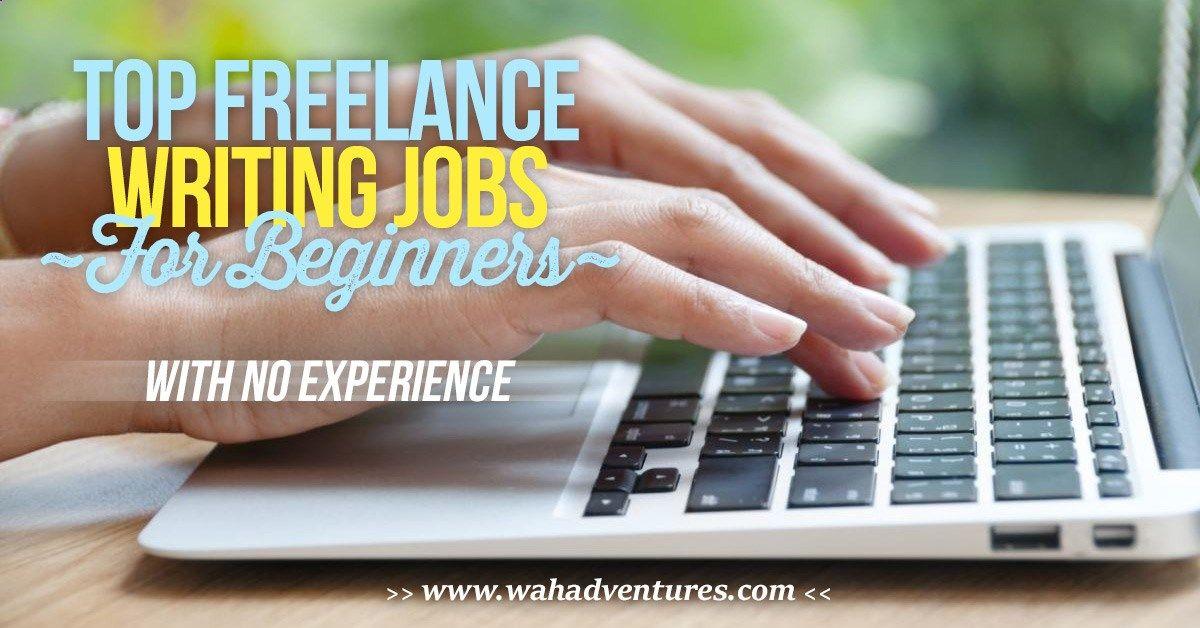 freelance writer resume no experience