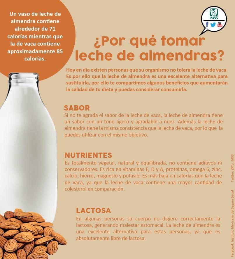 Dieta libre de lactosa para ninos