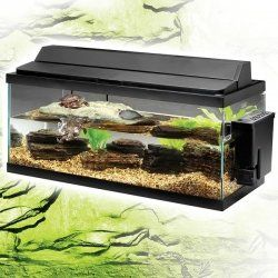 Pin By Katie Aragon On Interests Pet Turtle Red Eared Slider Tank Turtle Tank