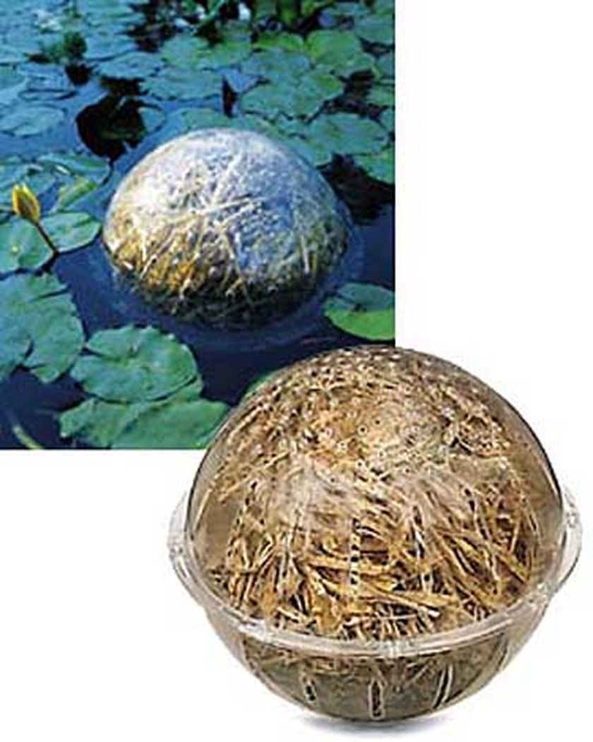 Barley Straw Bales Natural Pond Cleaner Gardeners Com Water Features In The Garden Ponds Backyard Pond Cleaning