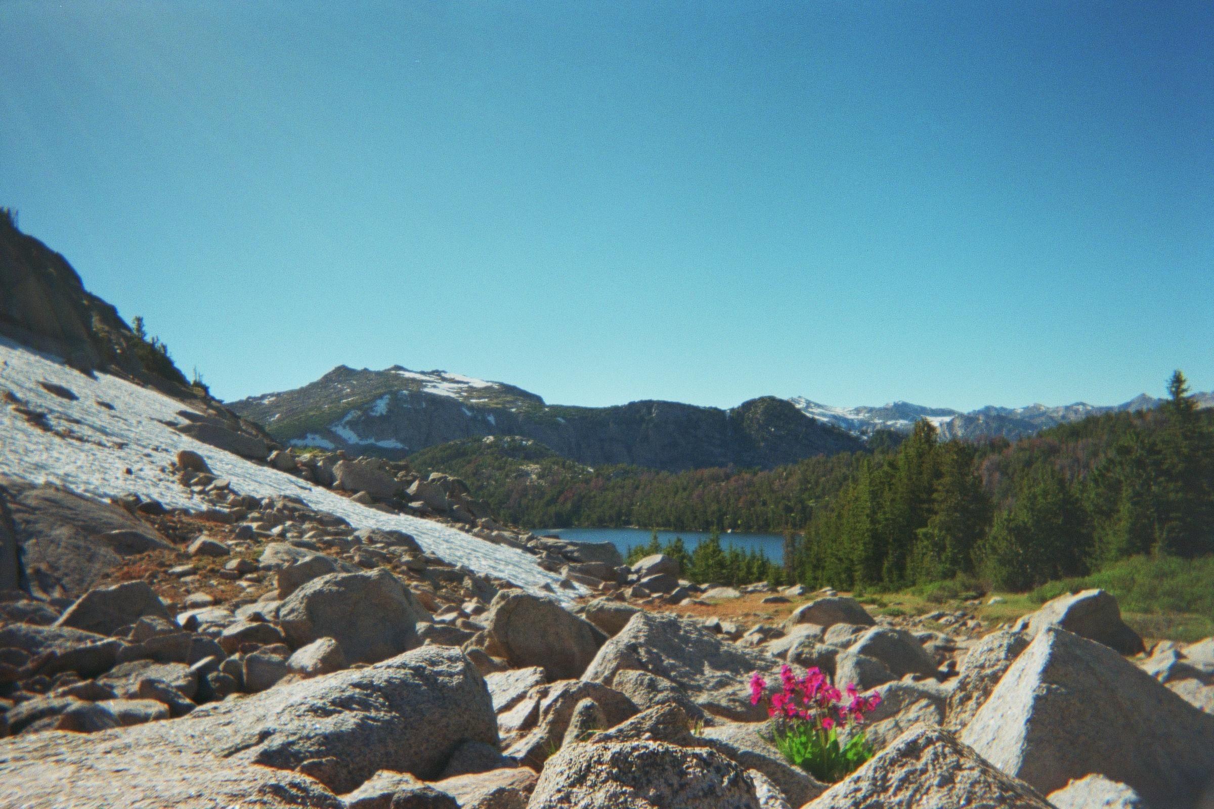 Wind River Peak Wyoming [OC] [2400x1600]