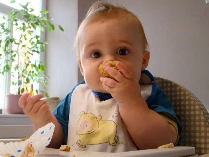 Baby 8 Monate Essen Vom Tisch
