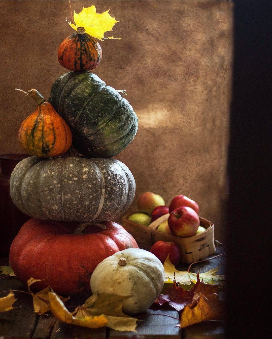 Pin By Manicurelover On Autumn Splendour Garden Whimsy Fabulous Fall Pumpkin Orange