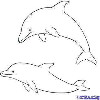 Pin By Crazycandigirl On Bleach Shirts Sea Creatures Drawing Cute Drawings Kawaii Drawings