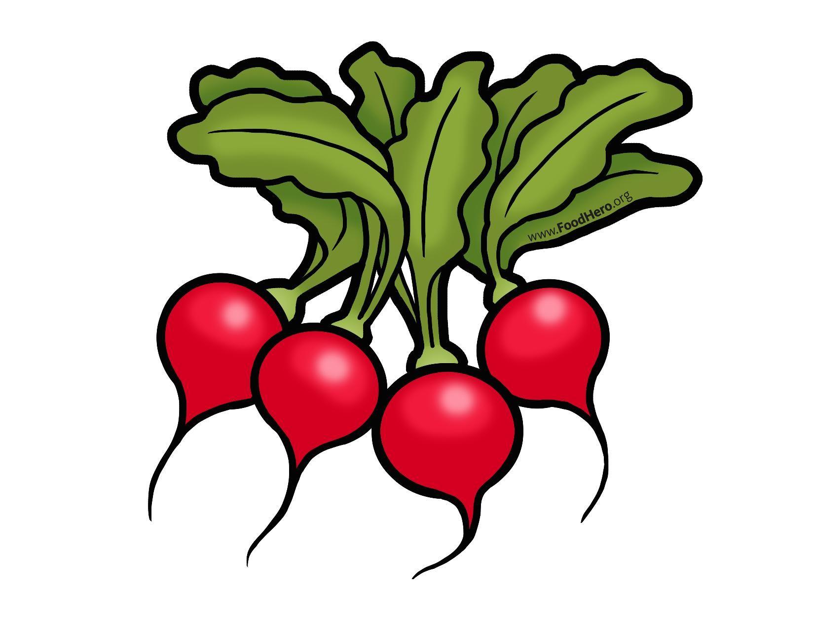 radish illustration from foodhero.org   vegetable cartoon, food art,  cartoon butterfly  pinterest