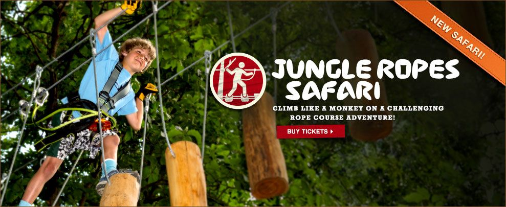 Jungle Ropes Safari Climb Like A Monkey On A Challenging Rope Course Adventure San Diego Zoo Safari Park Safari Park San Diego Travel