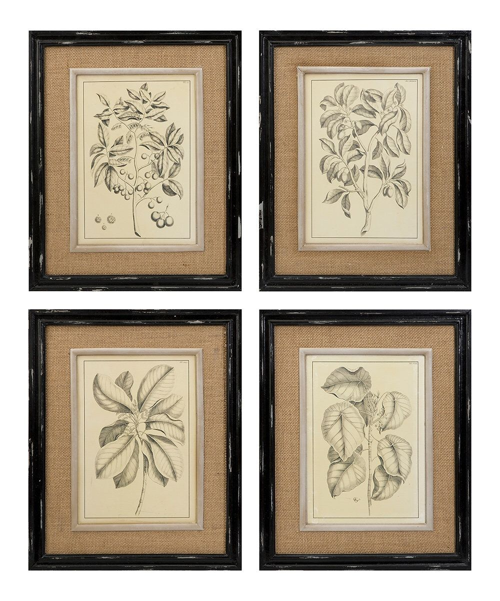 Look at this Victoriana Wall Décor - Set of Four on #zulily today ...