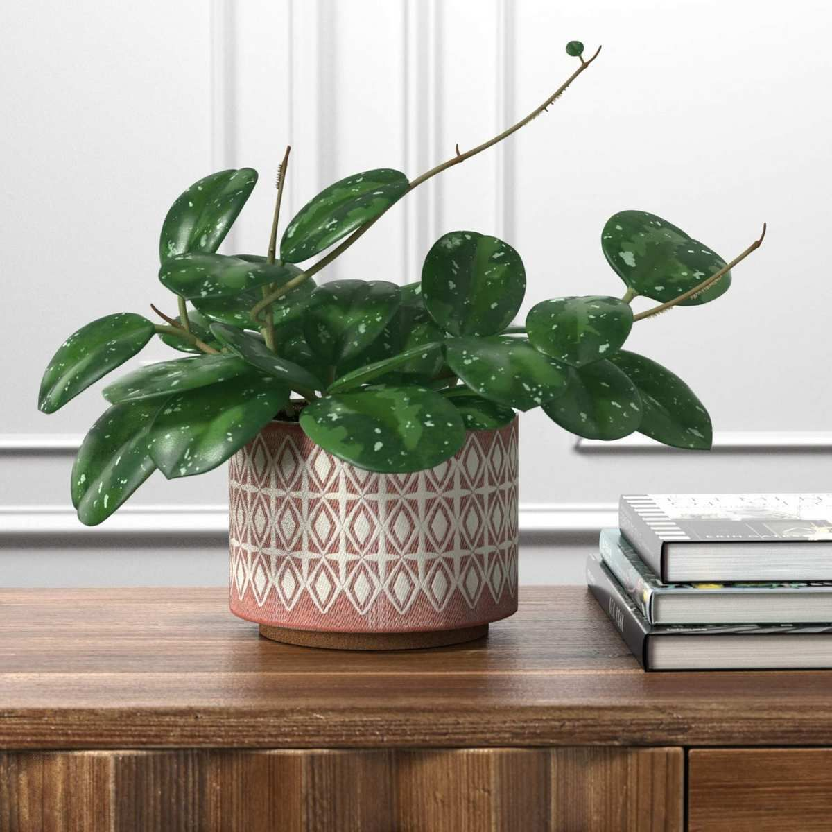 24 cheap but expensivelooking plant accessories you can