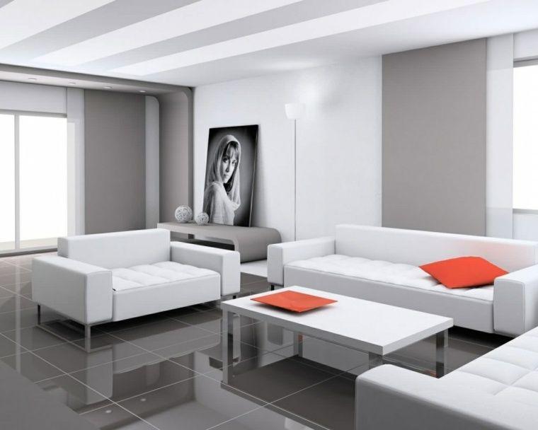 Salon moderne gris  harmonie esthétique