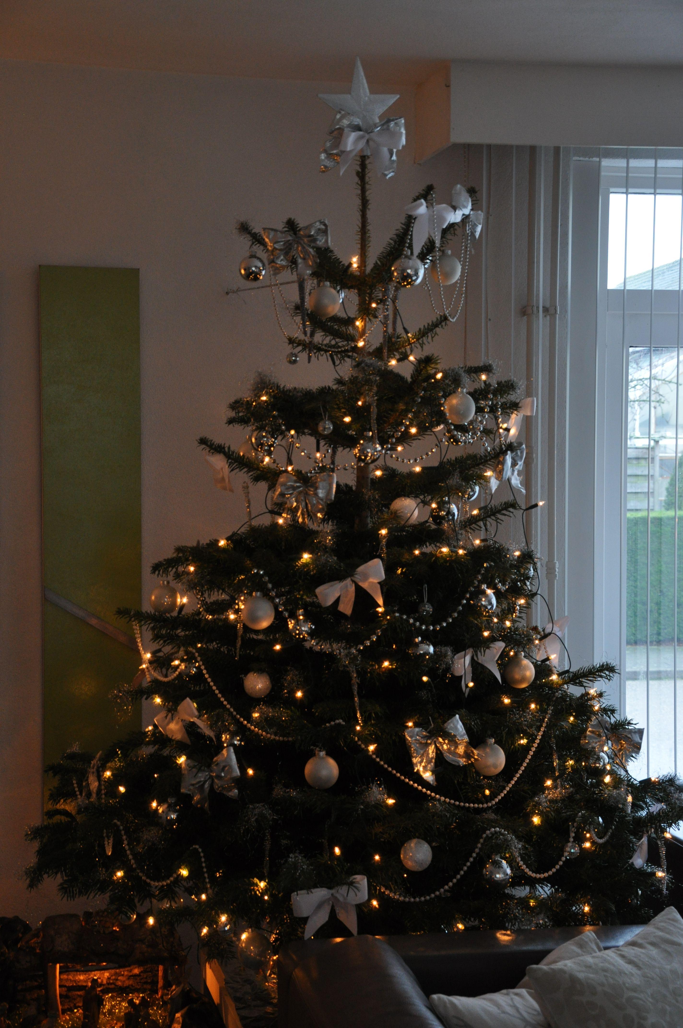 Kerstboom Wit Zilver Kerstmis Kerst Kerstboom