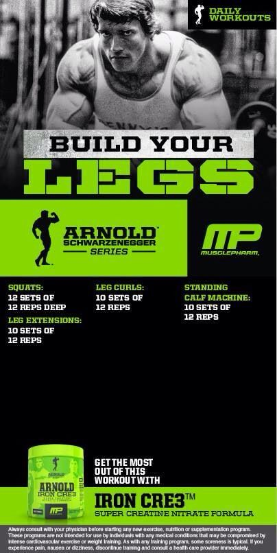 Build your legs leg workouts pinterest legs workout and exercises related ebooks arnolds epic leg routine for more bodybuilding marinemusclec source by marinemuscle malvernweather Images