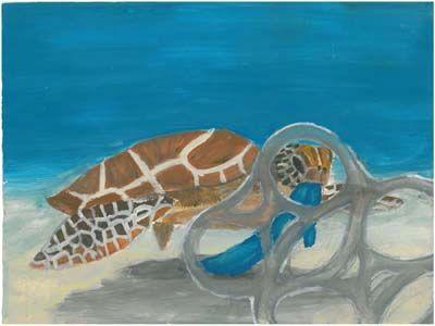 2012/2013 Winners of NOAA's Marine Debris Program Art Contest - Claire E., 6th grade