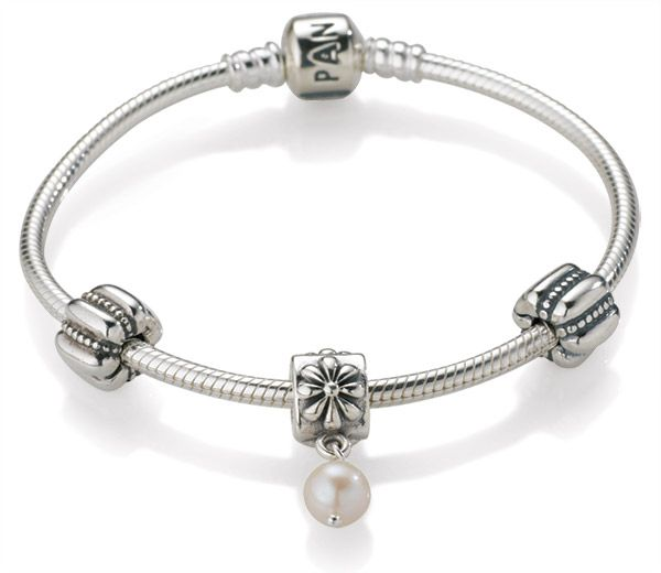 Pandora Jewelry Meaning: A Plain Simple Silver Pandora Bracelet With A Charm On It