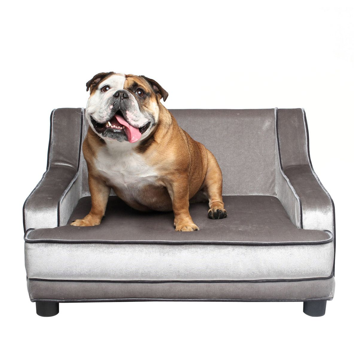 Modern Pet Sofa Accommodates Dogs Up To 55 Lbs Can Also Be Used