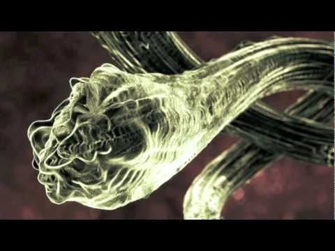 Cure Morgellons Home Remedy Wake Up Pinterest