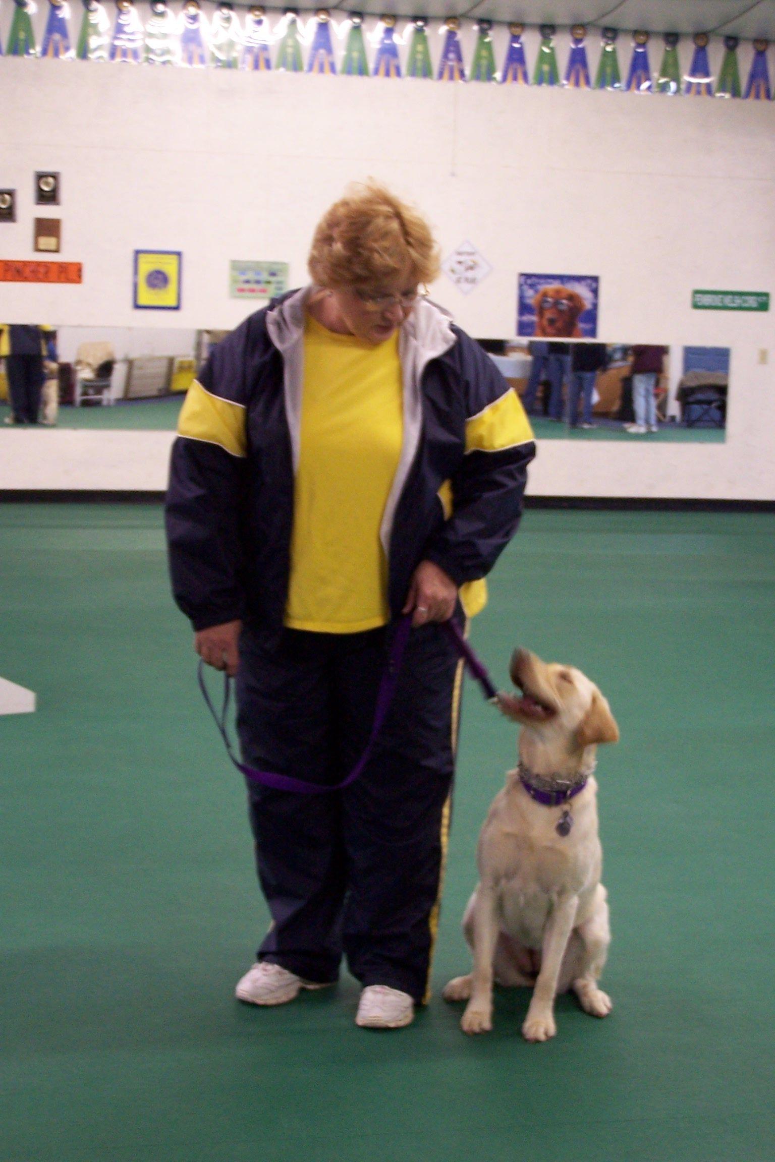 Dogwood Dog Training The Best Dog Training Place In Houston Tx