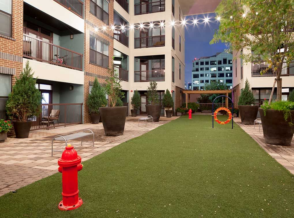 Play with your best friend in AMLI Quadrangle's open paw