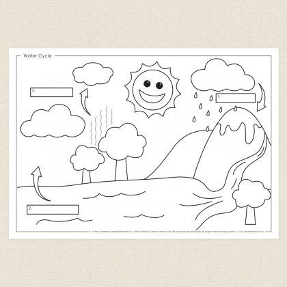 Childrens colouring in activity Water Cycle Activity Sheet