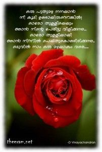 Malayalam Captions On Life Quotes And Captions Malayalam Quotes