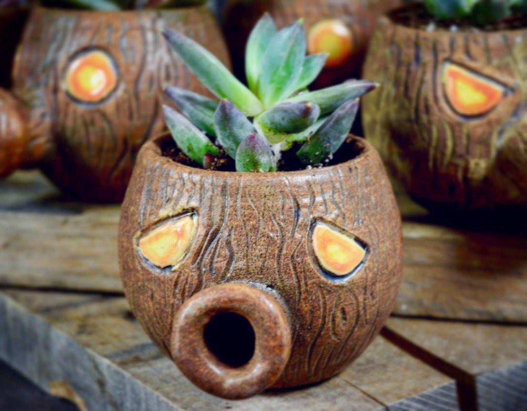 Pin by Hailey Kenton on Crackpot Crockery Planter pots