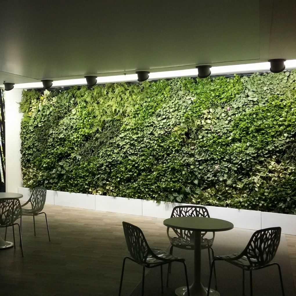 vertical garden indoor tangerang   vertikal garden makassar, Gartenarbeit ideen