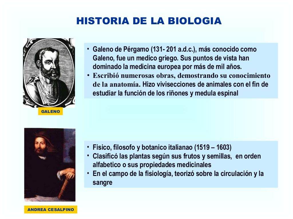 HISTORIA DE LA BIOLOGIA GALENO • Galeno de Pérgamo (131- 201 a.d.c. ...