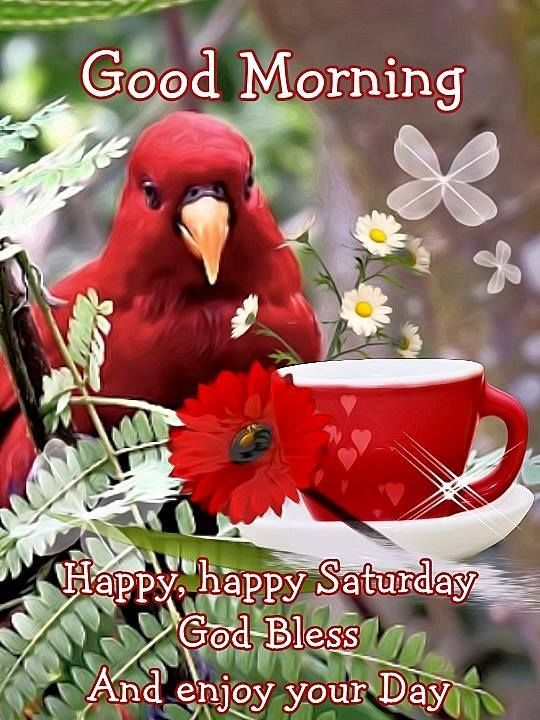 Good Morning Happy Happy Saturday God Bless You Saturday We Are