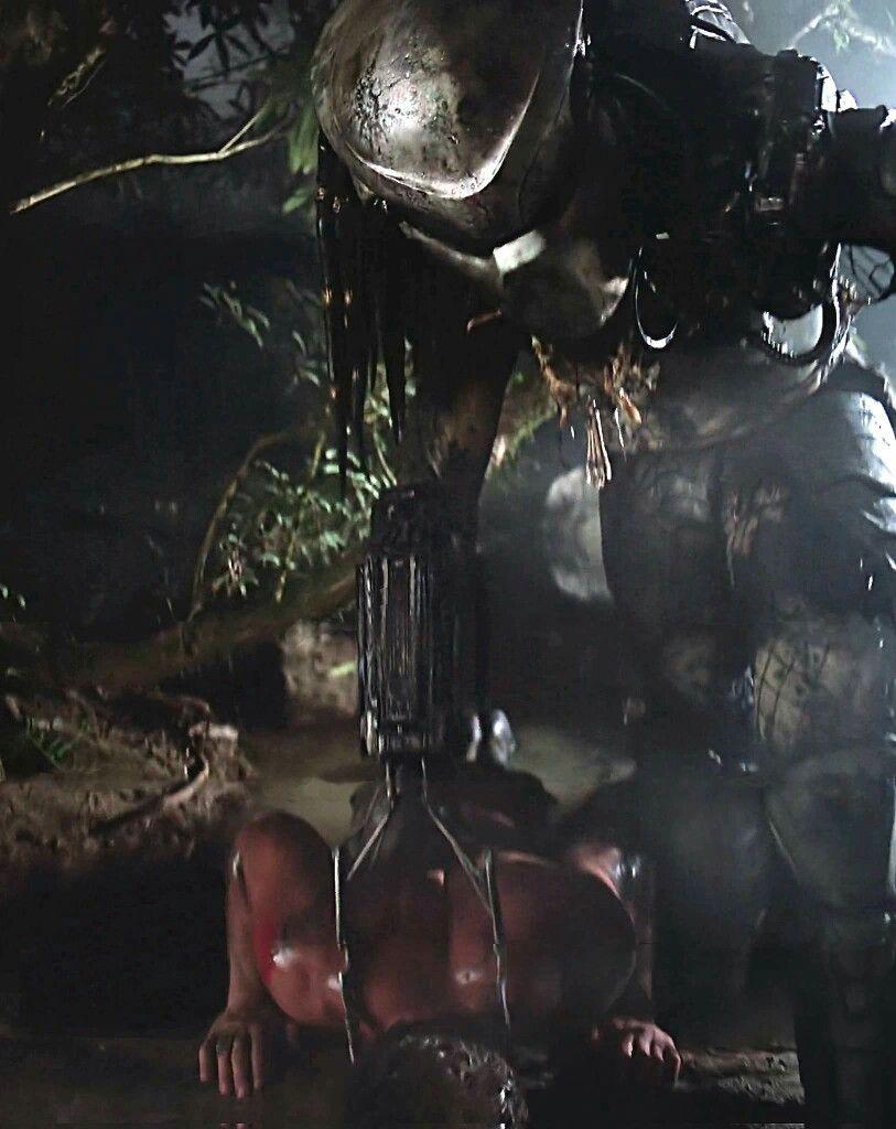 Predator vs Arnold