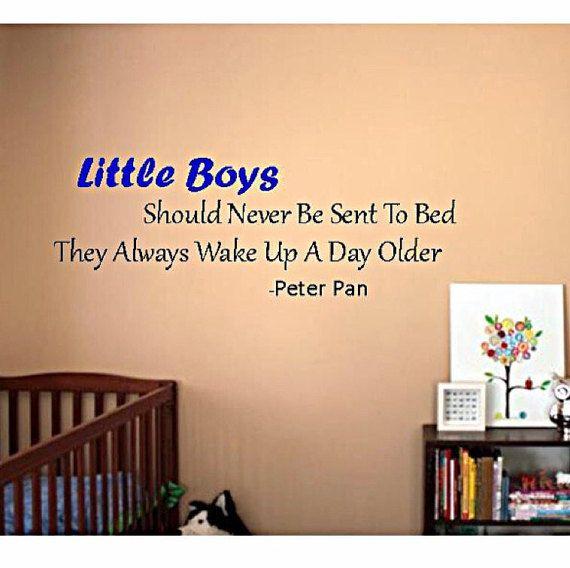 Baby boy nursery, nursery wall art, nursery wall decal, Peter pan ...
