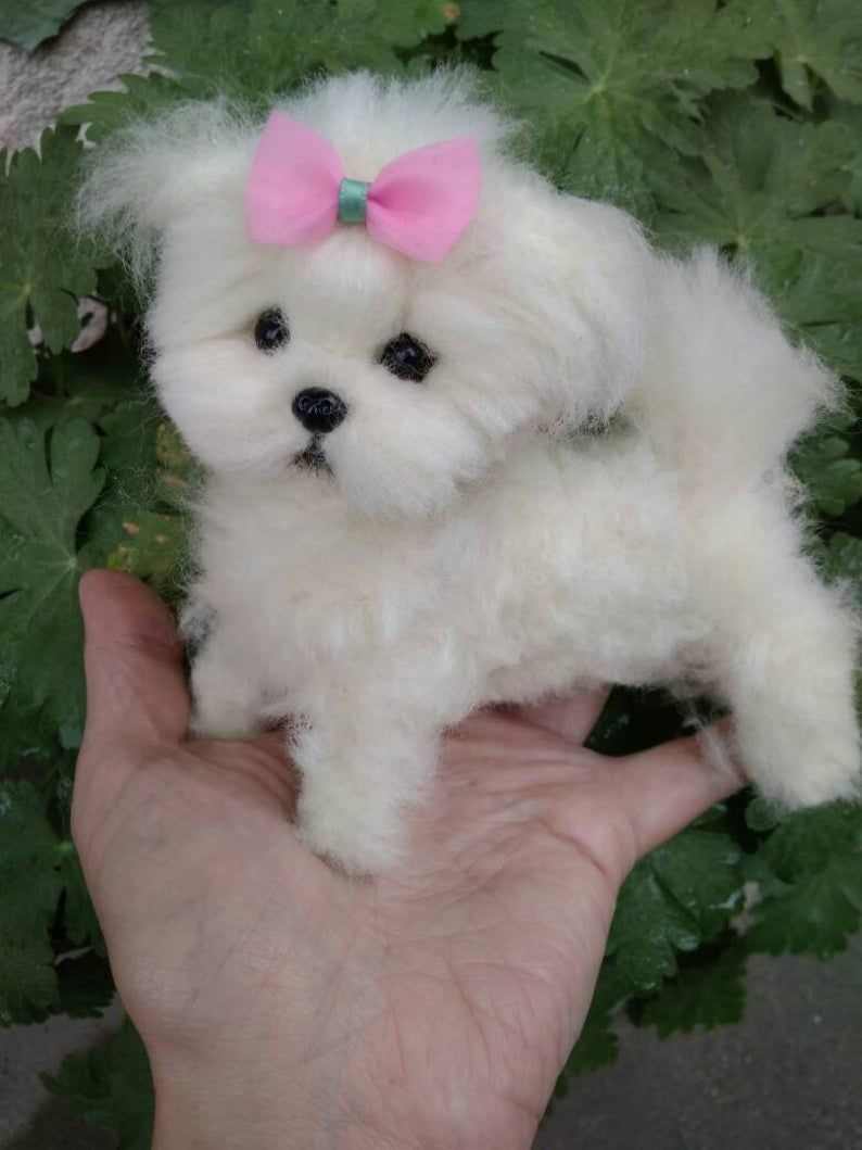 Ooak Needle Felted Maltese Puppy Dog Maltese Puppy Maltese Dog For Sale Dogs And Puppies