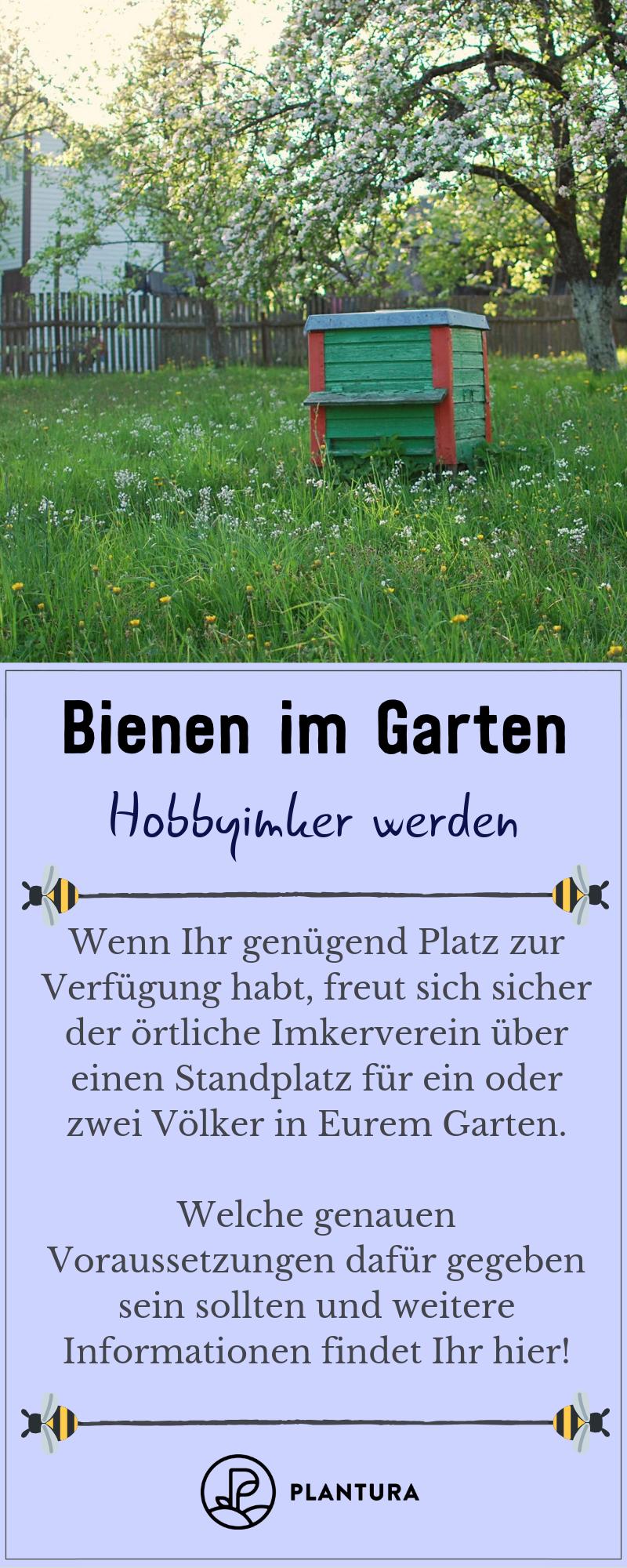 Pin Von Felicita Auf Hoby Imker Bienen Bienenfreundlicher Garten