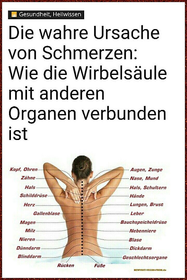 Ursache von Schmerzen. Wie die Wirbelsäule mit anderen Organen ...
