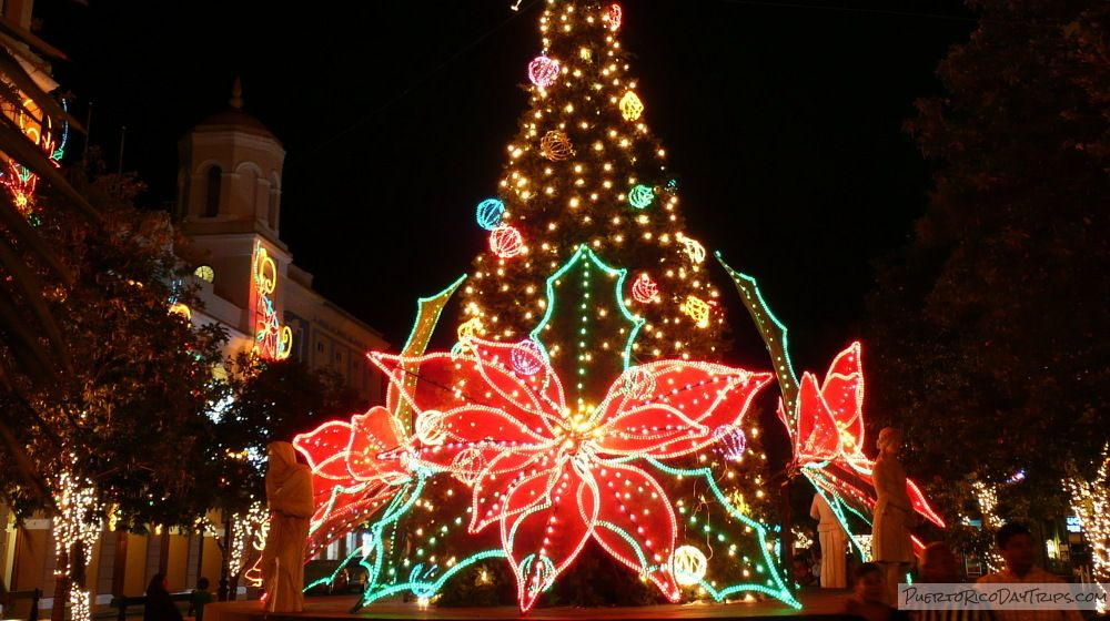 December Events Christmas traditions, Holiday lights