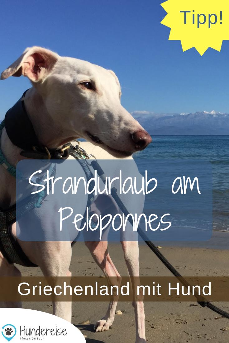 Urlaub Mit Hund In Griechenland Die Strande Urlaub Mit Hund Hunde Urlaub