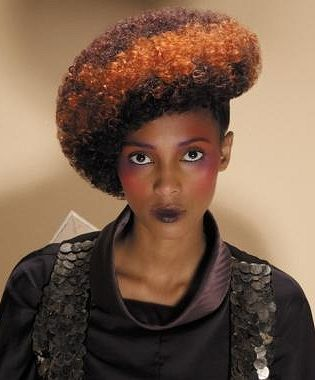 Groovy 1000 Images About Afro Chic On Pinterest Short Hairstyles Gunalazisus