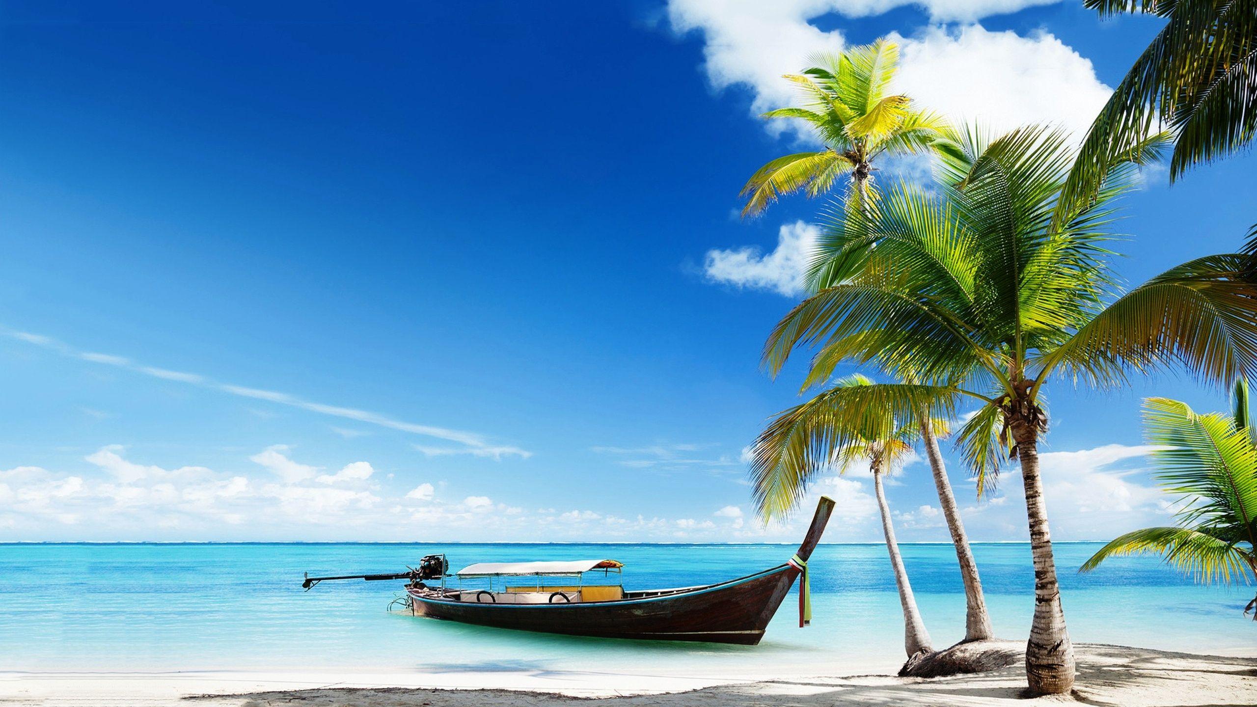 Boat Tropical Beach Wallpaper Jpg 2560 1440 Imagens De Praia Beach Pink Fotos De Leao