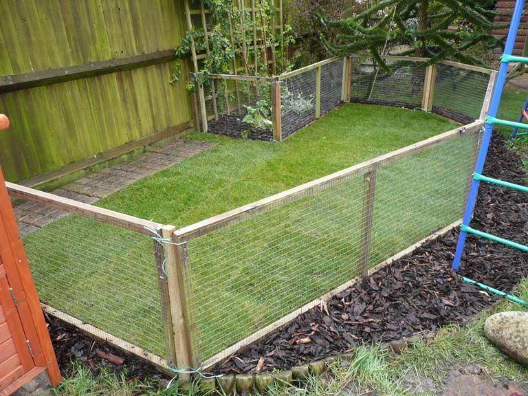 Outdoor Guinea Pig Pen I Want To Do Something Like This For My Pigs