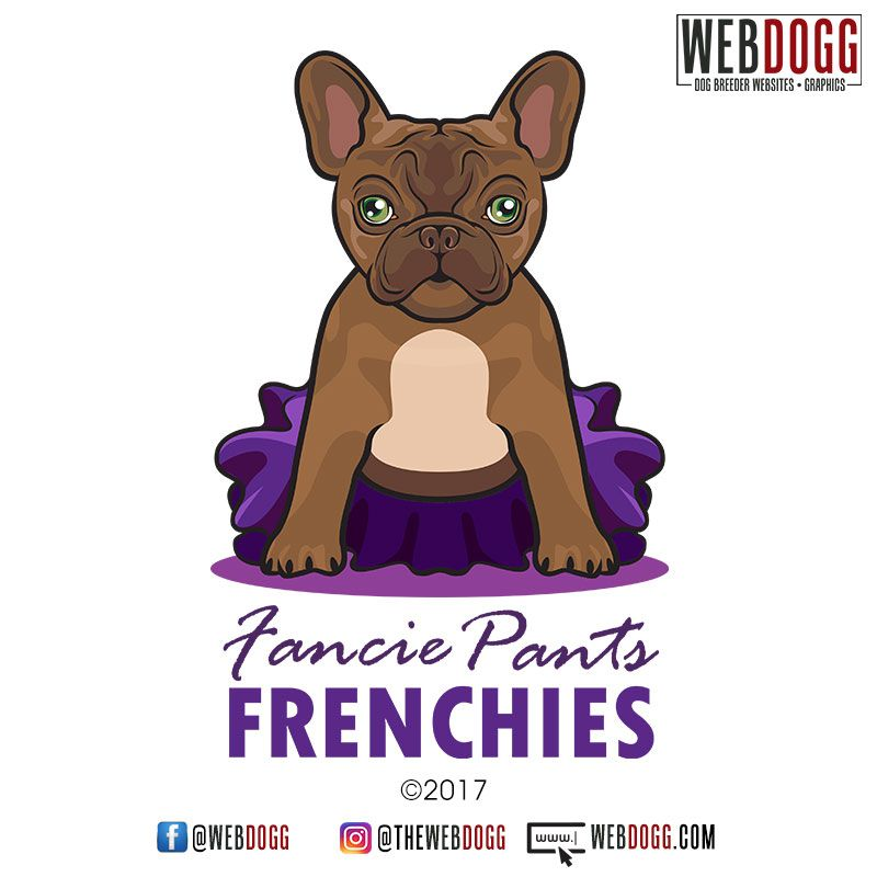 Fancie Pants Frenchies French Bulldog Breeder Logo Design