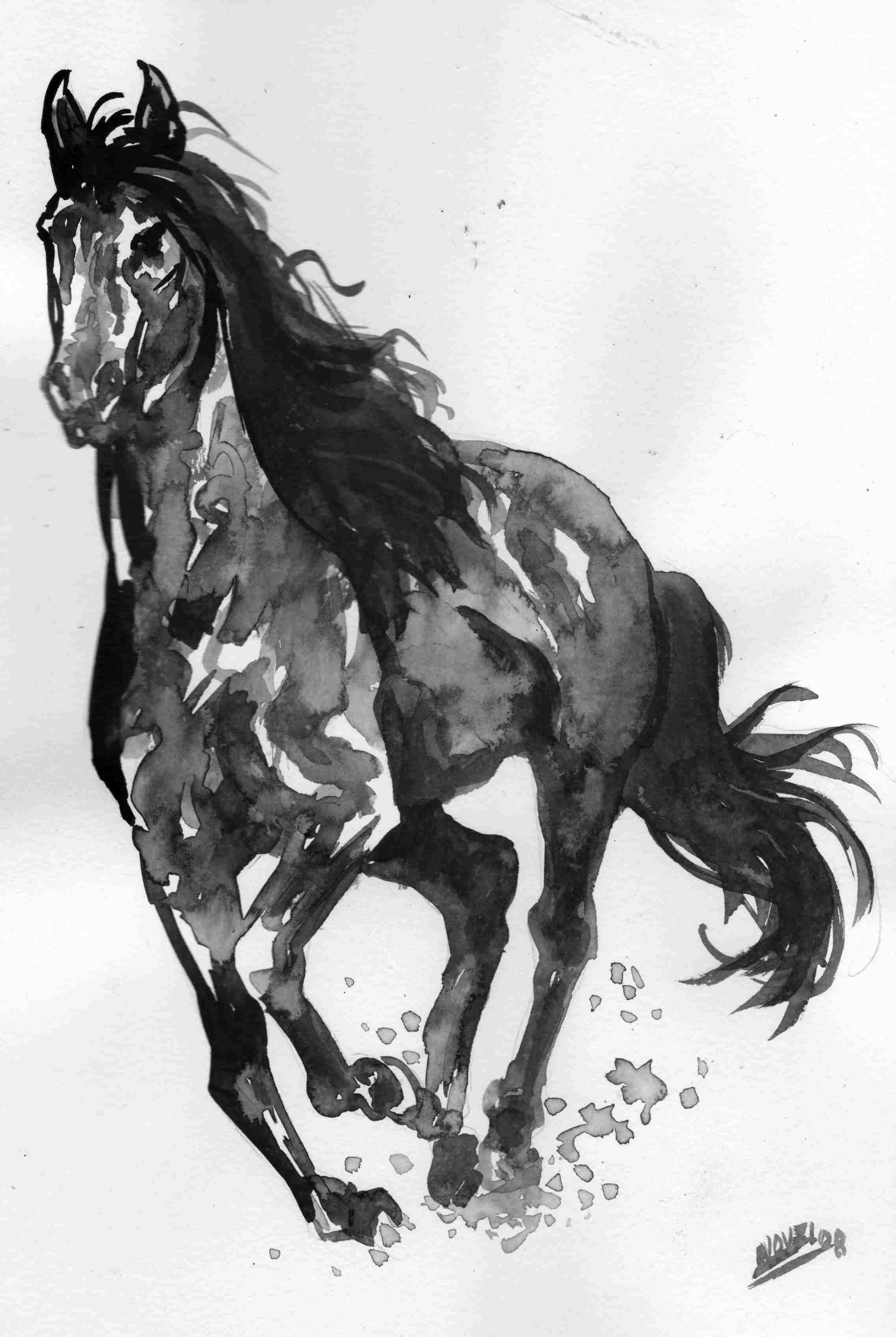Dessin noir et blanc - Cheval a imprimer noir et blanc ...