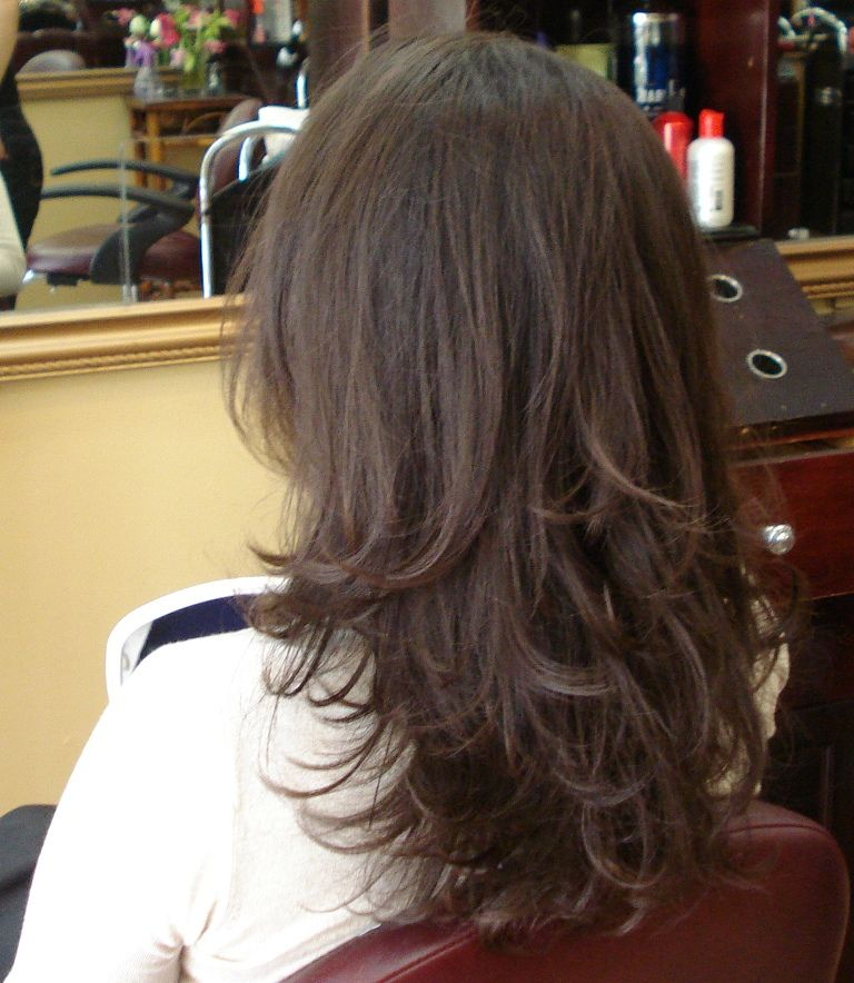 Long Hairstyles By Santa Monica Hair Salon Hair Styles Haircuts For Long Hair Hair