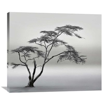 Global Gallery 'A Very Long Story' by Piet Flour Graphic Art on Wrapped Canvas Size: