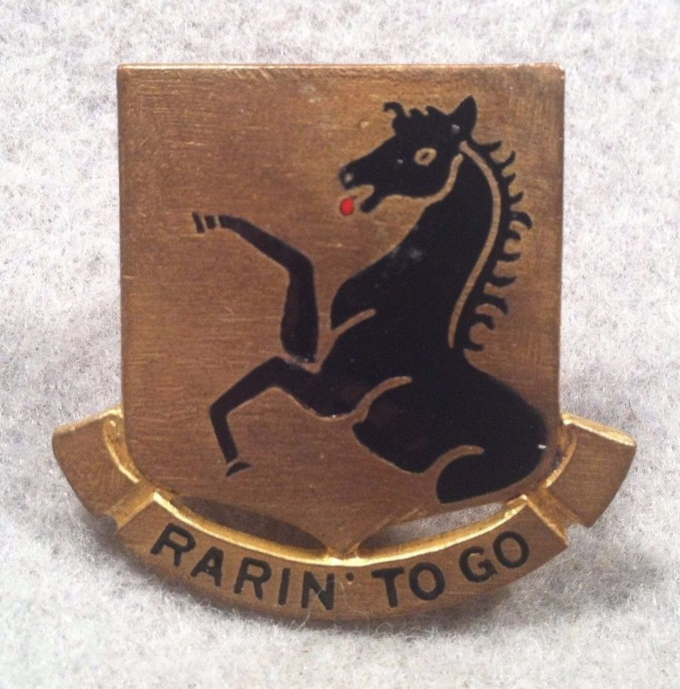 US Army 112th Cavalry Regiment DUI Meyer PB DI Pin Badge