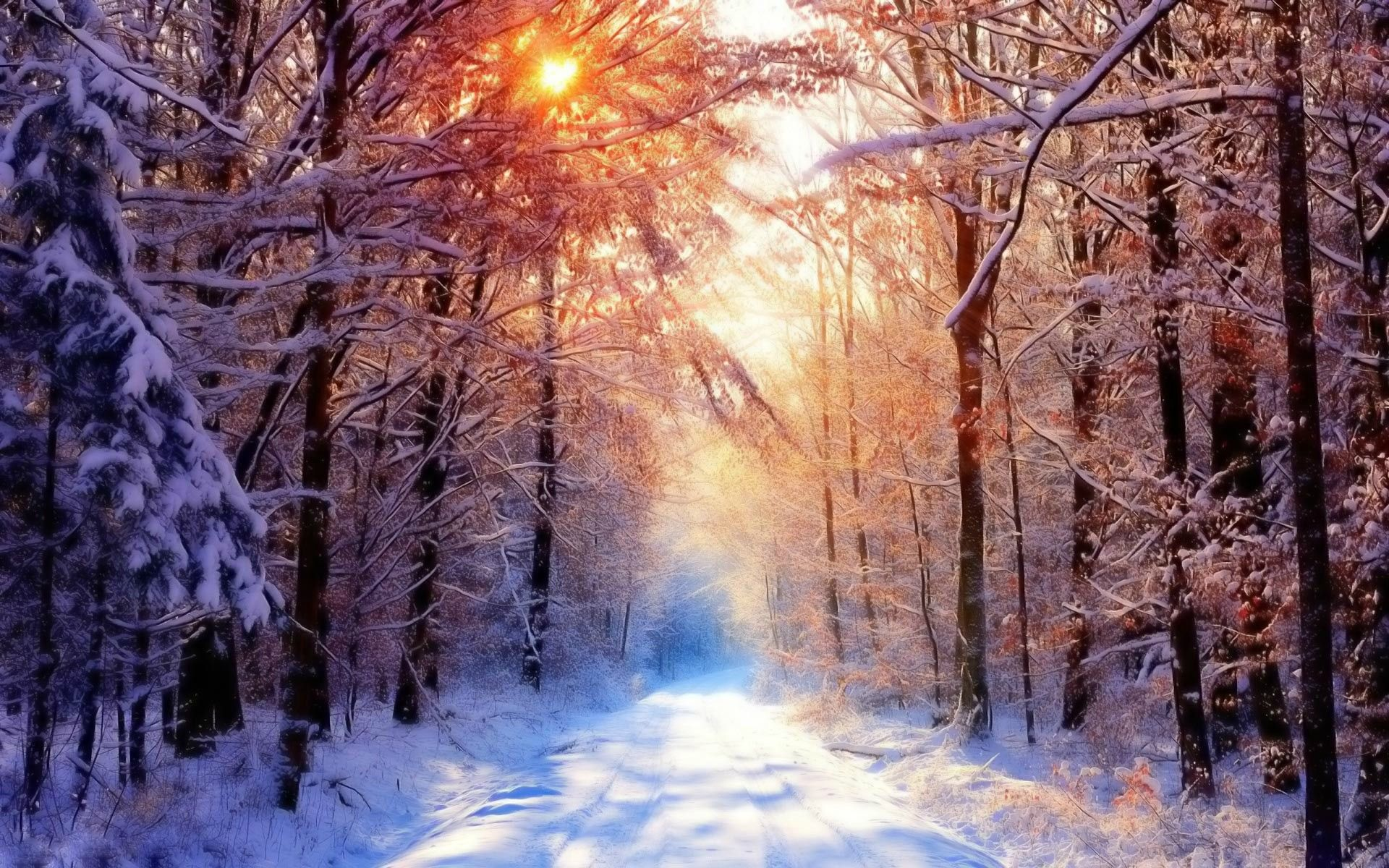 Snow and sun wallpaper (With images) Winter wallpaper