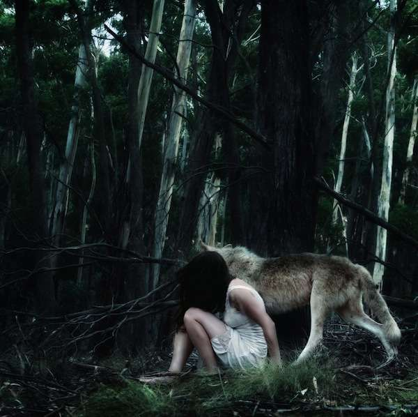 Darkness seeped Down and slowly slithering through the trees, the girl and the wolf made their way towards the oblivious deer...
