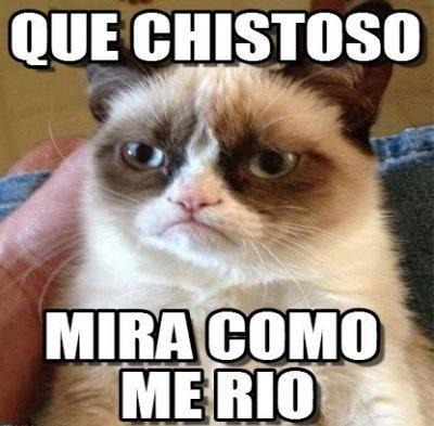 Hola Grupo De Whatsapp Mensajes Divertidos Imagenes Para Whatsapp Funny Grumpy Cat Memes Grumpy Cat Meme Grumpy Cat