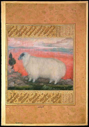 A Mountain Sheep - Mughal The Minto Album Padarath ca. 1615-18, India. In 07A.1b:
