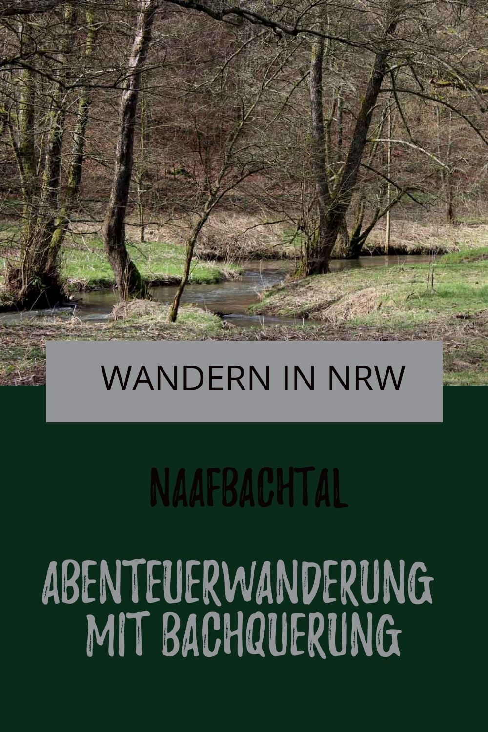 Photo of Wanderung Naafbachtal