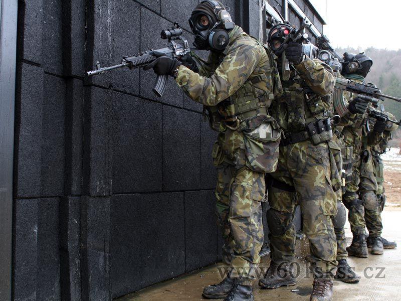 czech military
